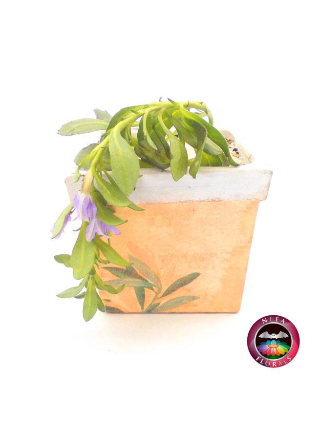 Scaevola en Matera Cuadrada Vintage. Neea Florals